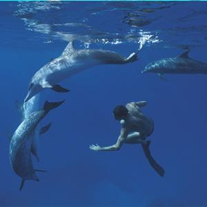swiming adventure