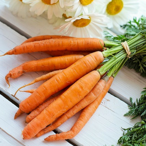 Carrots - Foods to Improve Immunity