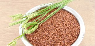 Ragi - Finger Millets